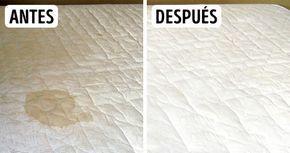 Como limpia para siempre tu colchón de manchas y olores desagradables con esta solución natural no toxica - TuSalud.Info