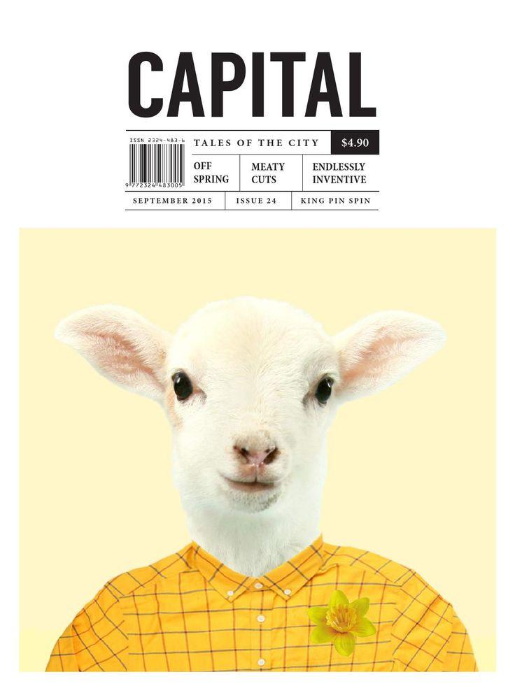 Capital 24