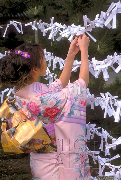 Japan - Girl in kimono with omikuji oracle during New Year shrine visit