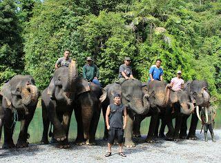 SUMATRA TOUR GUIDE: Visit Sumtra-Indonesia