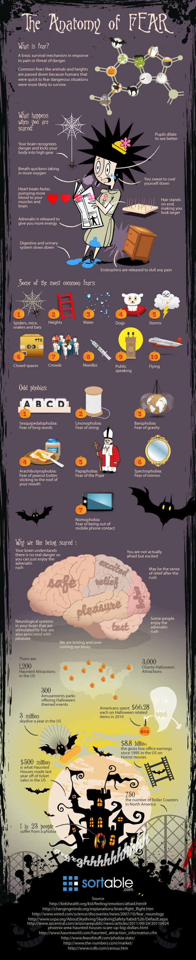 I'm super afraid of spiders. I'm sure most people have one or 2 fears. Check out this infographic and dissect fears!