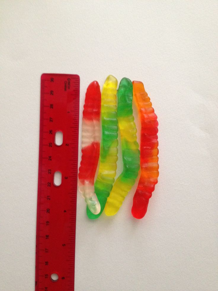 Worm Measurement