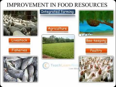 TECHNO Science class 9 - AGRICULTURE AND ANIMAL HUSBANDRY METHODS OF IMP...