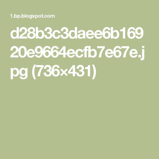 d28b3c3daee6b16920e9664ecfb7e67e.jpg (736×431)
