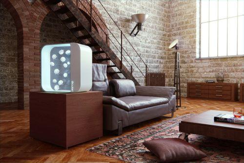 www.design-meduzy.cz