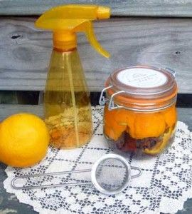 Homemade Citrus Cleaner | Crafts For The Home | Home Cleaner — Country Woman Magazine