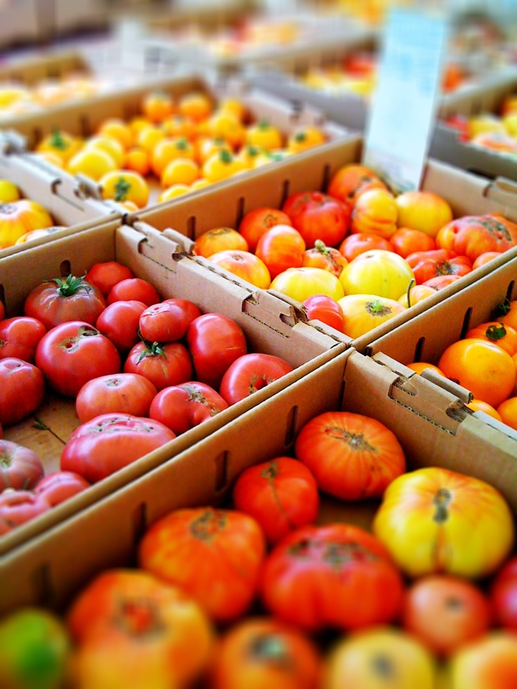Hunt's Marketing Boasts No GMO Tomatoes