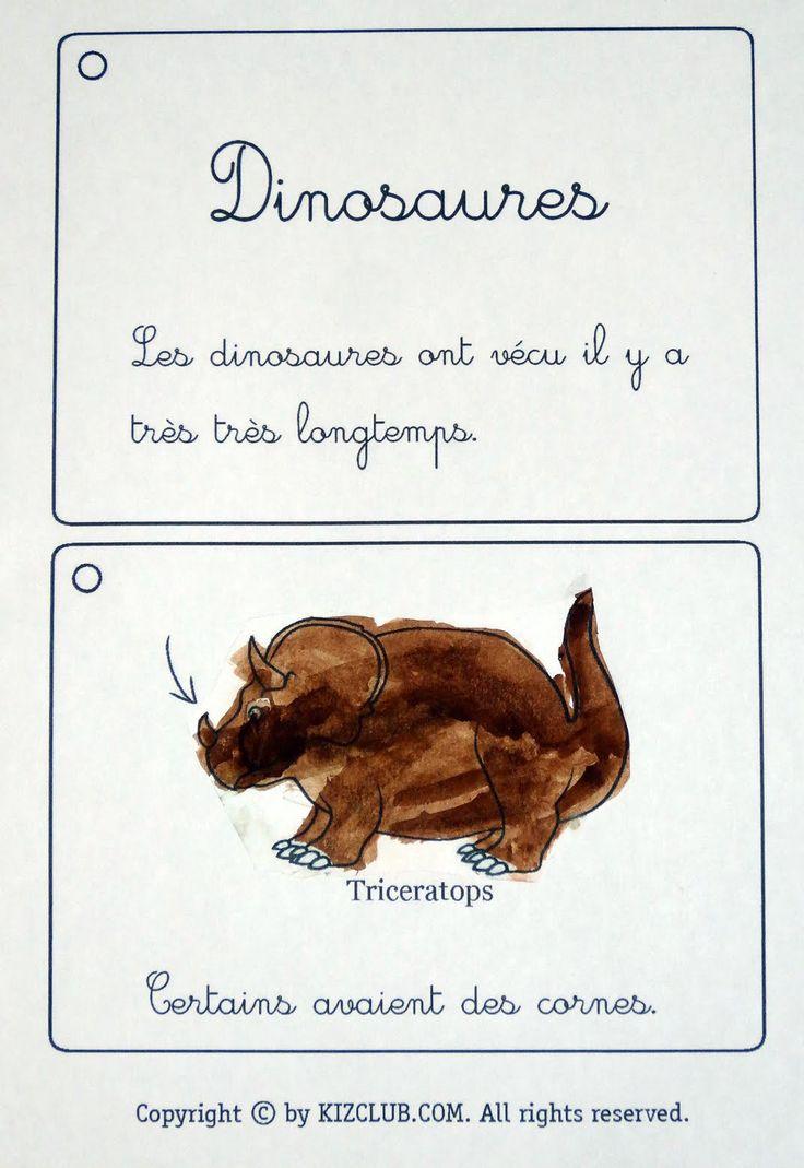 Toujours grâce au document  ici,      Luciole a peint des dinosaures      et a pu remarquer les caractéristiques de certains :   ...