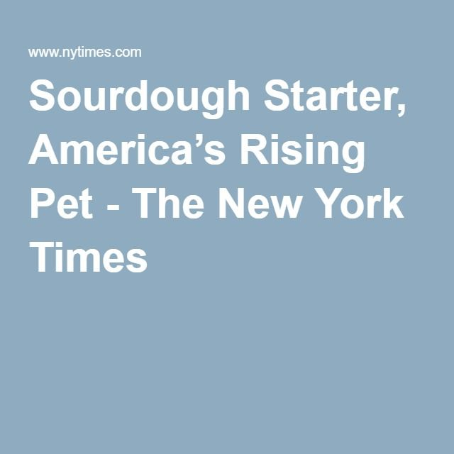 Sourdough Starter, America's Rising Pet - The New York Times