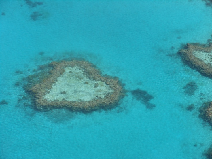 This isn't exactly a beach, but this shows how amazing our planet is... This is the beautiful heart reef on the great barrier reef, north queensland... I took this photo :)