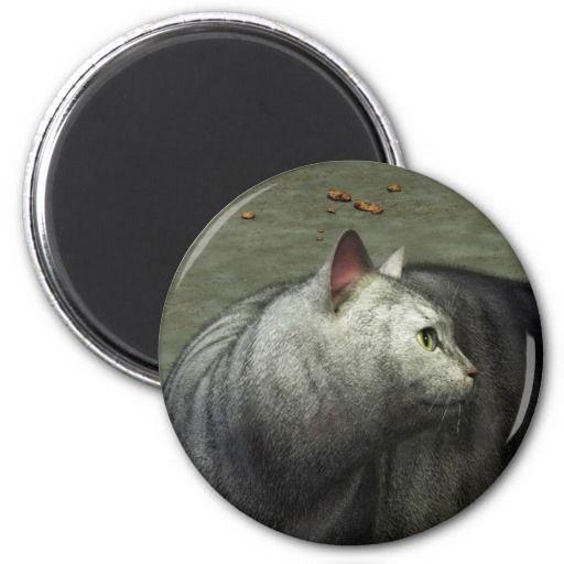 Gray Cat 5 Magnets