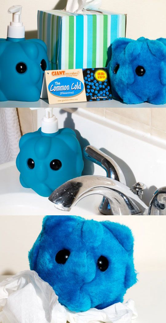 GIANTmicrobes by Drew Oliver. All your favorite viruses, diseases, bacterica, and cells, but 1,000,000 times bigger!
