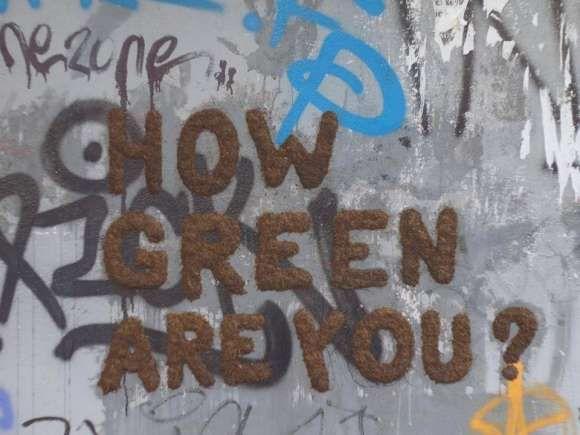 grass_grafitti_doiteco_1