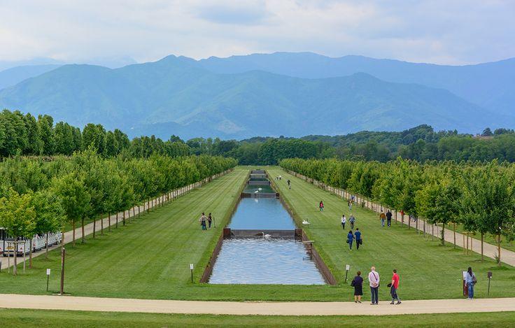 Infiniti spazi verdi contornati dalle maestose montagne piemontesi