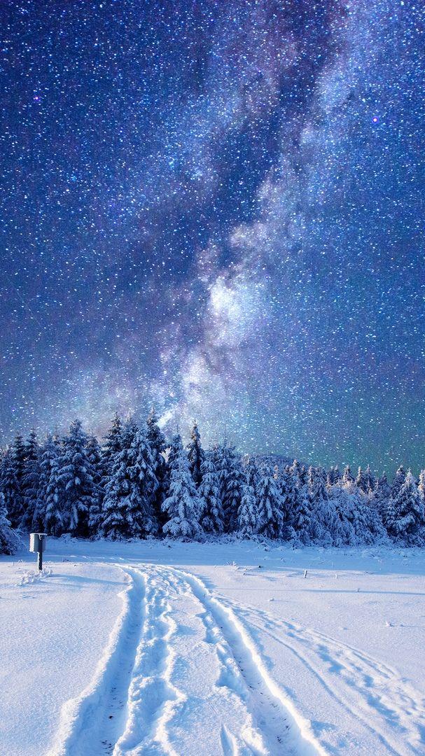 Snow Winter Forest Nature Night Sky Stars Milkyway Night Sky Photography Night Sky Wallpaper Winter Scenery