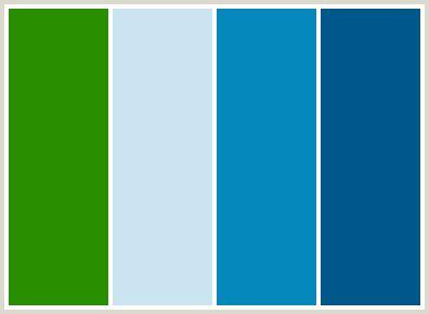 forest green color palette color palette best forest green