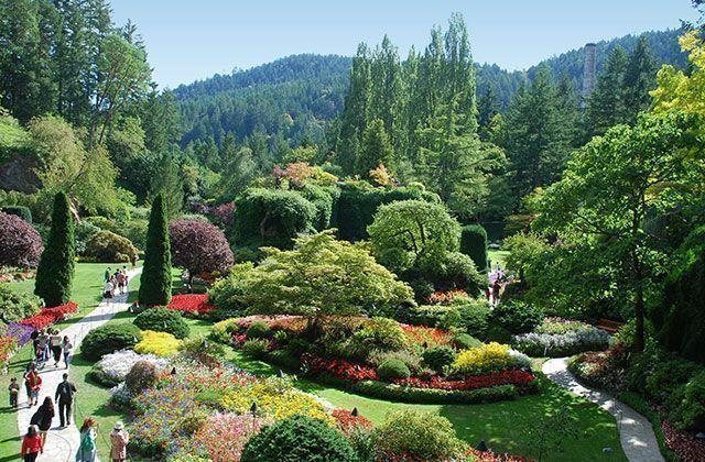d667107dce2a6320bc7f50fcb17f703f - How Much Is Admission To Butchart Gardens