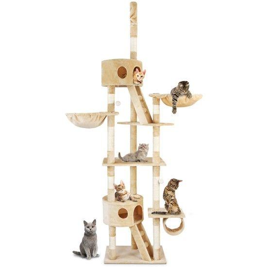 die besten 17 ideen zu kratzbaum deckenhoch auf pinterest katzen aneinander gew hnen crazy. Black Bedroom Furniture Sets. Home Design Ideas