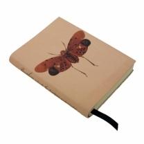 Pyrophorus notebook - www.origin-of-style.com