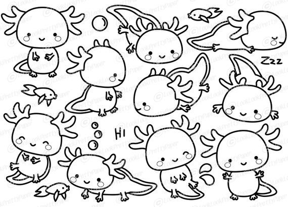 Premium Vector Clipart Kawaii Axolotl Outlines Cute Etsy Cute Easy Drawings Axolotl Clip Art