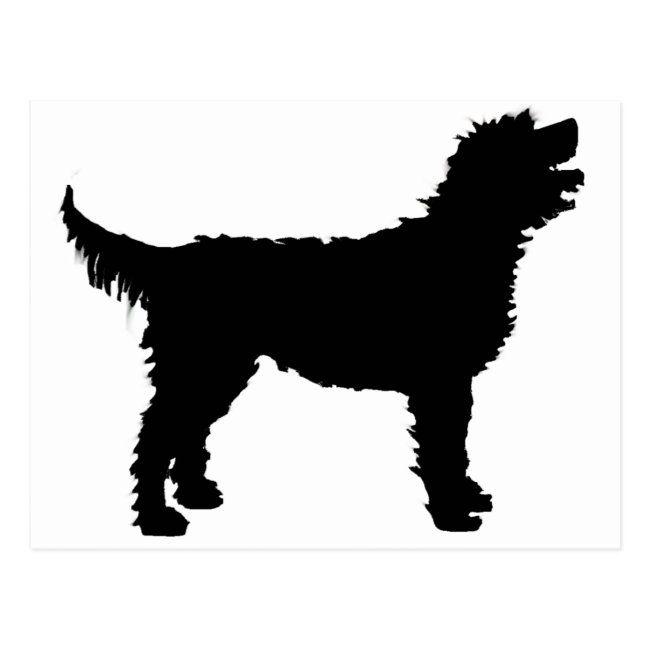 Labradoodle Dog In Black Postcard Zazzle Com In 2021 Labradoodle Dogs Labradoodle Labradoodle Wool