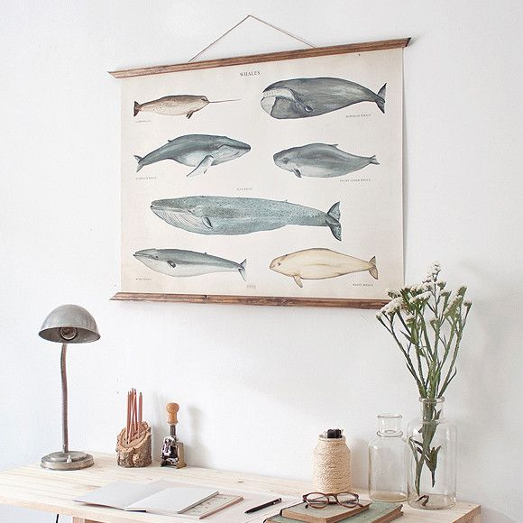 Poster - Wale | Pappsalon