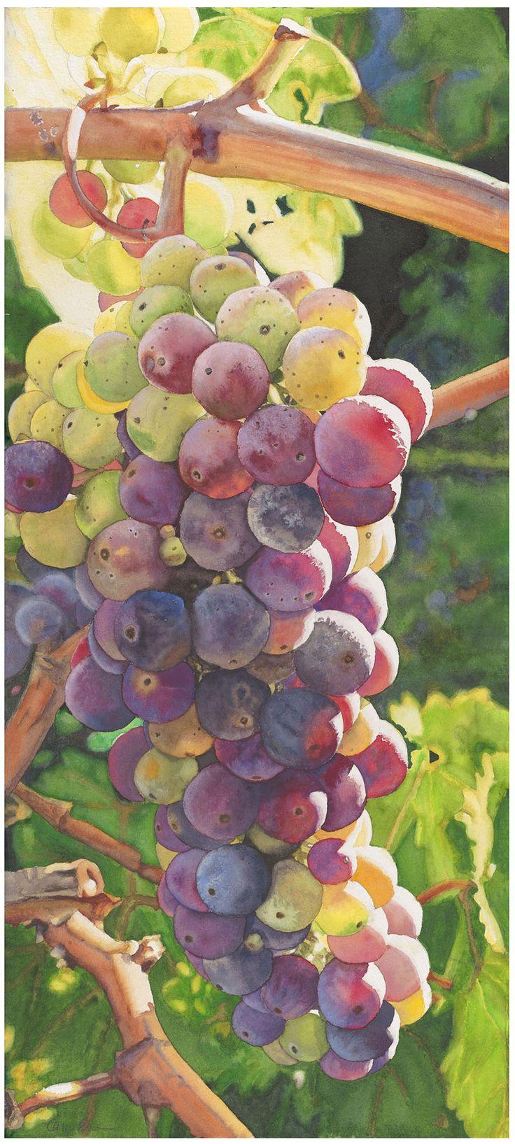 Life in Full Color, Cara Brown, www.lifeinfullcolor.com