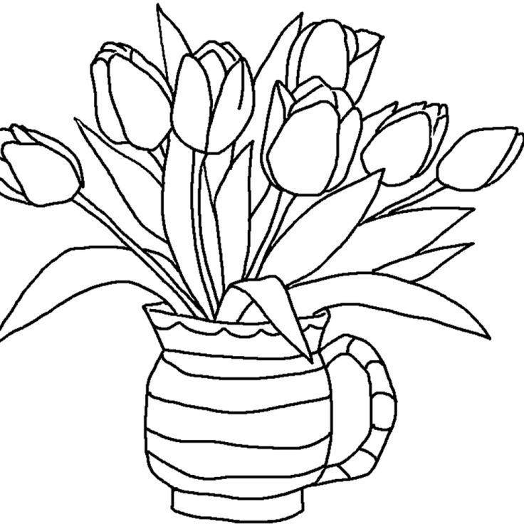 Tulips Pencil Drawing for Kids Tulips Pencil Drawing for