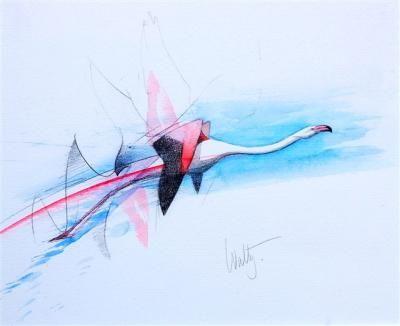 flamingo Walty