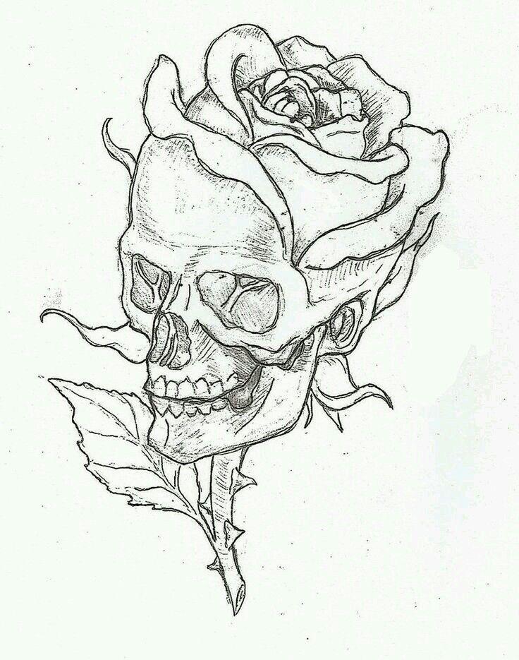Skull rose                                                                                                                                                                                 More