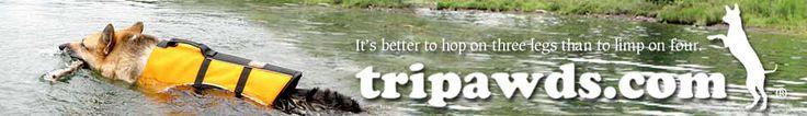 Tripawds Gear Produt Reviews Demo Videos   Three Legged Dog Harnesses, Life Vests, More » Tripawds Gear » Three Legged Dog Cancer Amputation Surgery Product Reviews Help