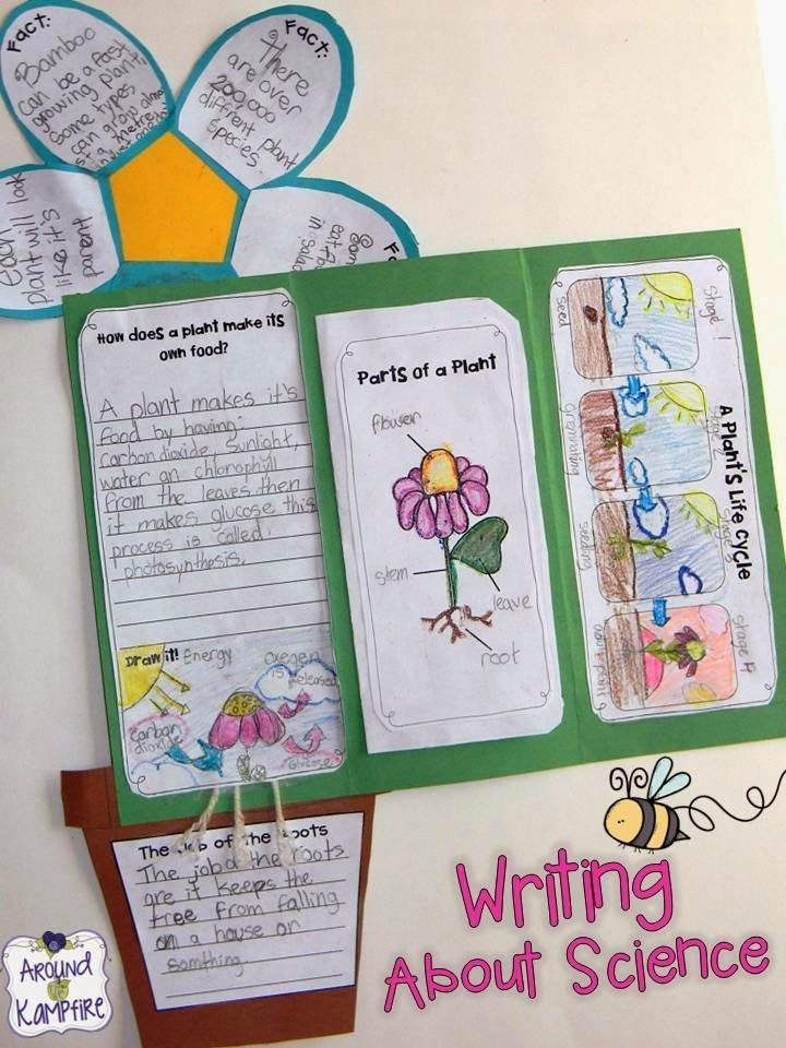 Blog post with LOTS of fun ideas for getting kids writing about science and teaching about the life cycle of plants.  Also includes FREE printable anchor charts for Photosynthesis and Parts of a Plant.