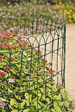 How To Keep Dogs Out Of Garden