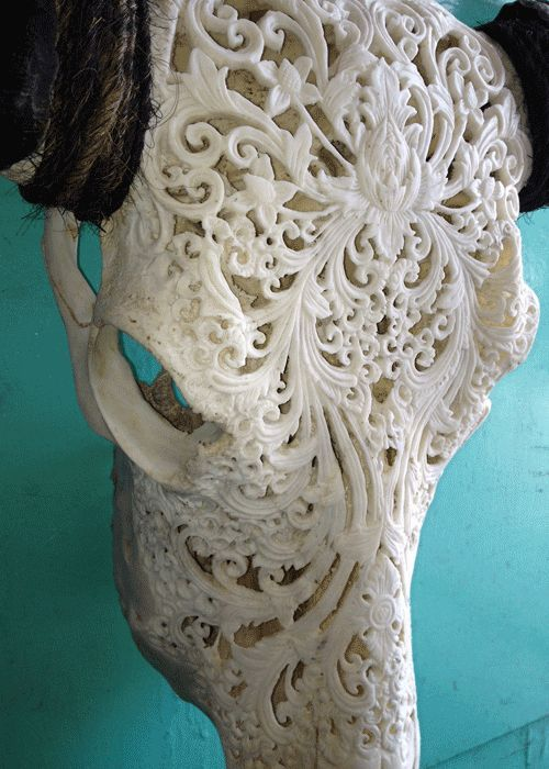 MASSIVE BONE SKULL HAND-CARVED