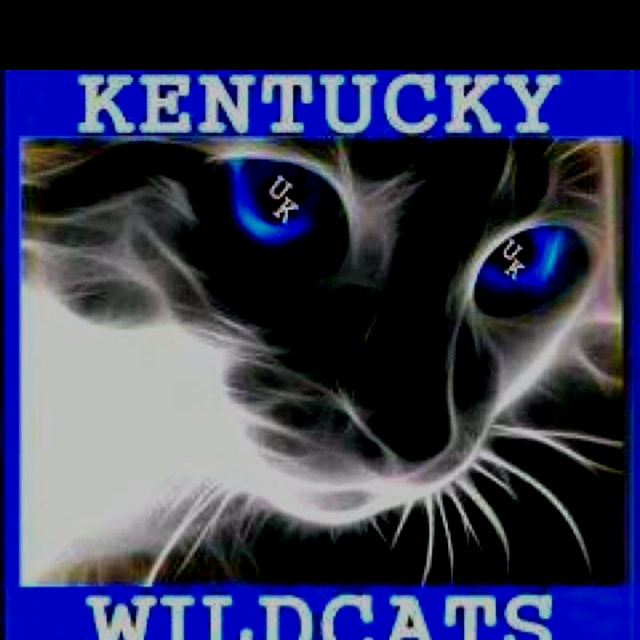 University Of Kentucky Man Cave Ideas : Best university of kentucky images on pinterest