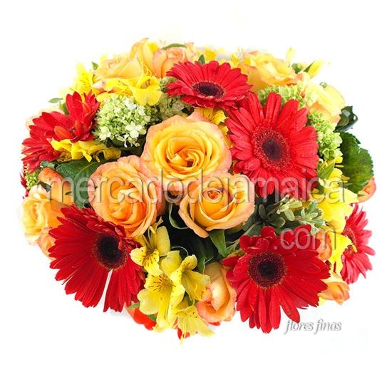 Arreglo Gerberas Rojas Londres ¡| Envia Flores