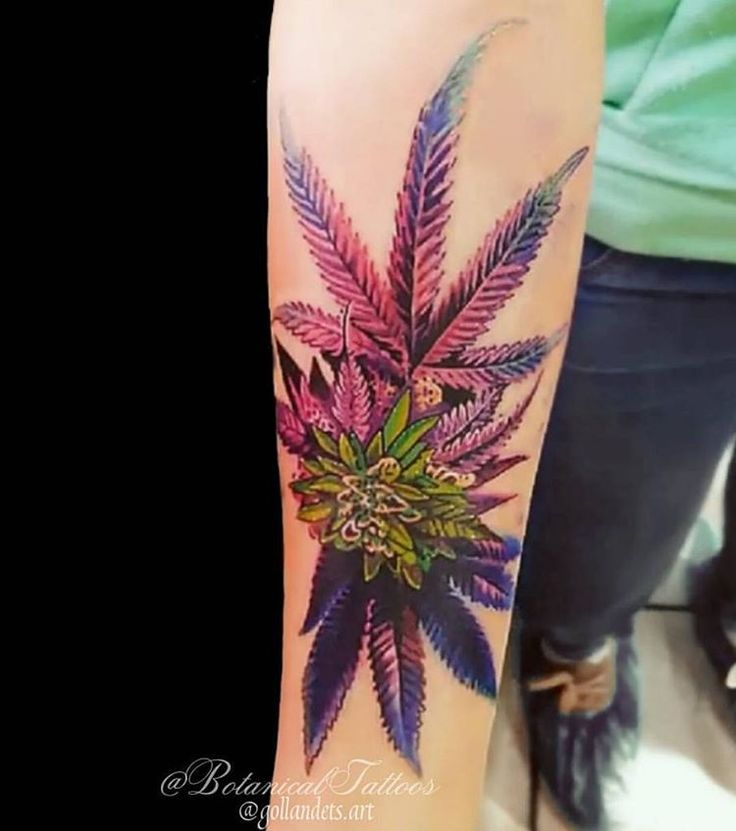 Eighth Of Weed: Ganja Tattoo How To Grow Marijuana And Weed To Produce