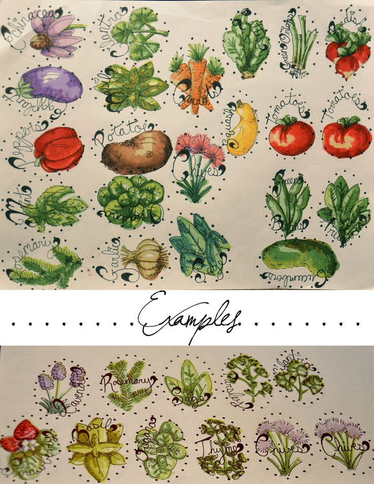 52 Best Images About Vegetable Garden Signs On Pinterest
