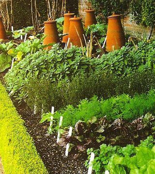 vegetable garden - convert this!