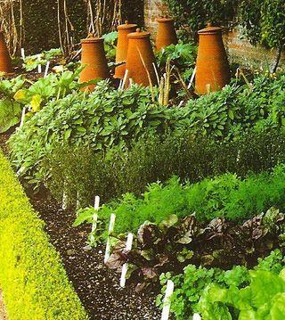 vegetable garden - convert this!