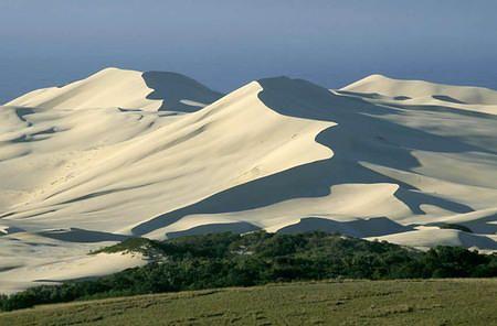 alexandria_dune_fields_ near Woody Cape, Eastern Cape, South Africa