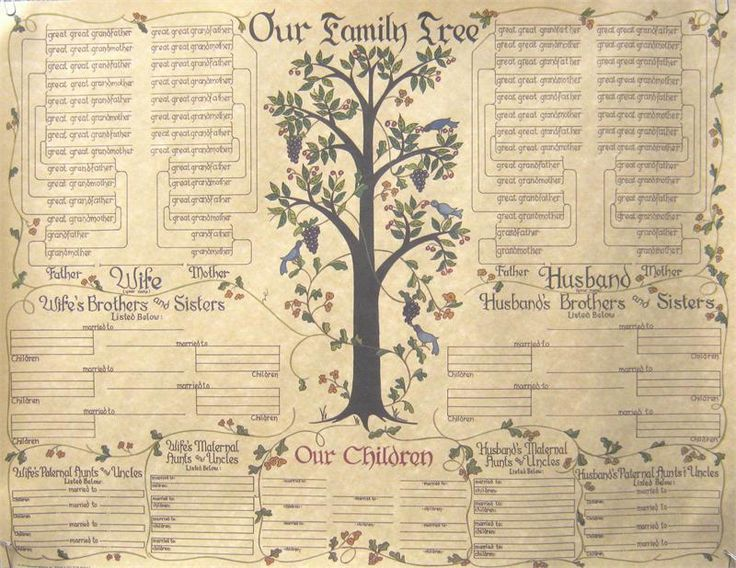 750 best FAMILY TREE ~ Charts \ Forms images on Pinterest Family - family tree chart template