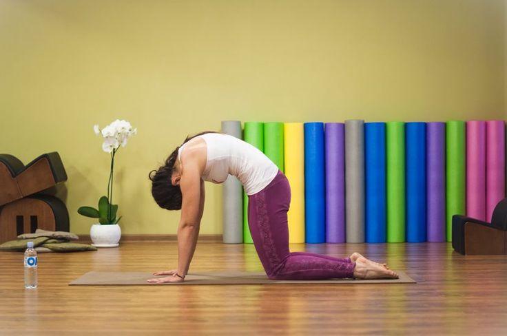 5 упражнений, избавляющих от боли в спине за 10 минут - Om Activ