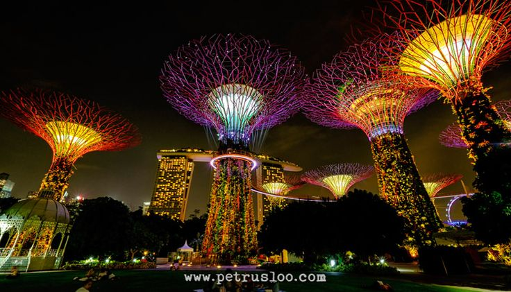 Taman Kota di Gardens by The Bay Singapore