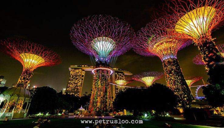 Taman Kota di Gardens by The Bay Singapore