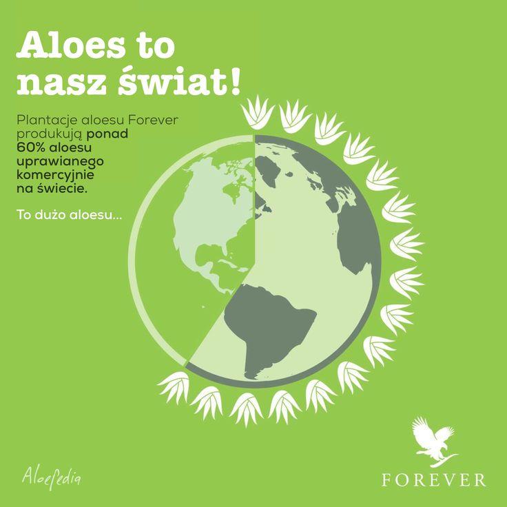 Aloes to nasz świat! Forever produkuje ponad 60% aloesu uprawianego komercyjnie na świecie.