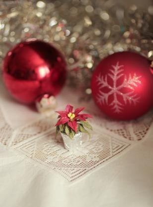 Nukkekoti Väinölän joulu - Maria Malmström - #joulutähti #nukkekotiväinölänjoulu #nukkekotiväinölä #nukkekoti #joulu #kirja