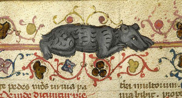 Bear | Breviary | Italy, probably Taranto | 1350-1400 | The Morgan Library & Museum