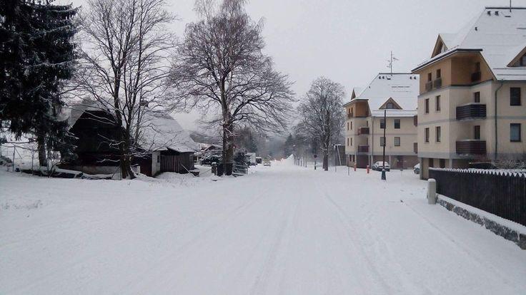 První sníh 21.11. a 22.11. 2015 :: roubené chalupy