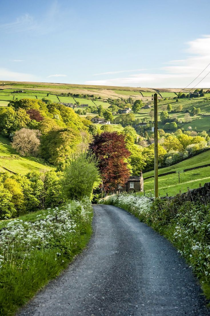 ***Country road in the Yorkshire Dales (England) b…